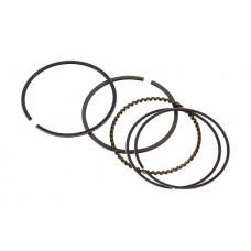Комплект поршневых колец Briggs&Stratton 795690